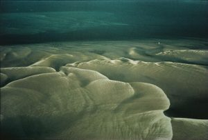 Sandbars, Cape Cod, Massachusetts  © Estate of William A