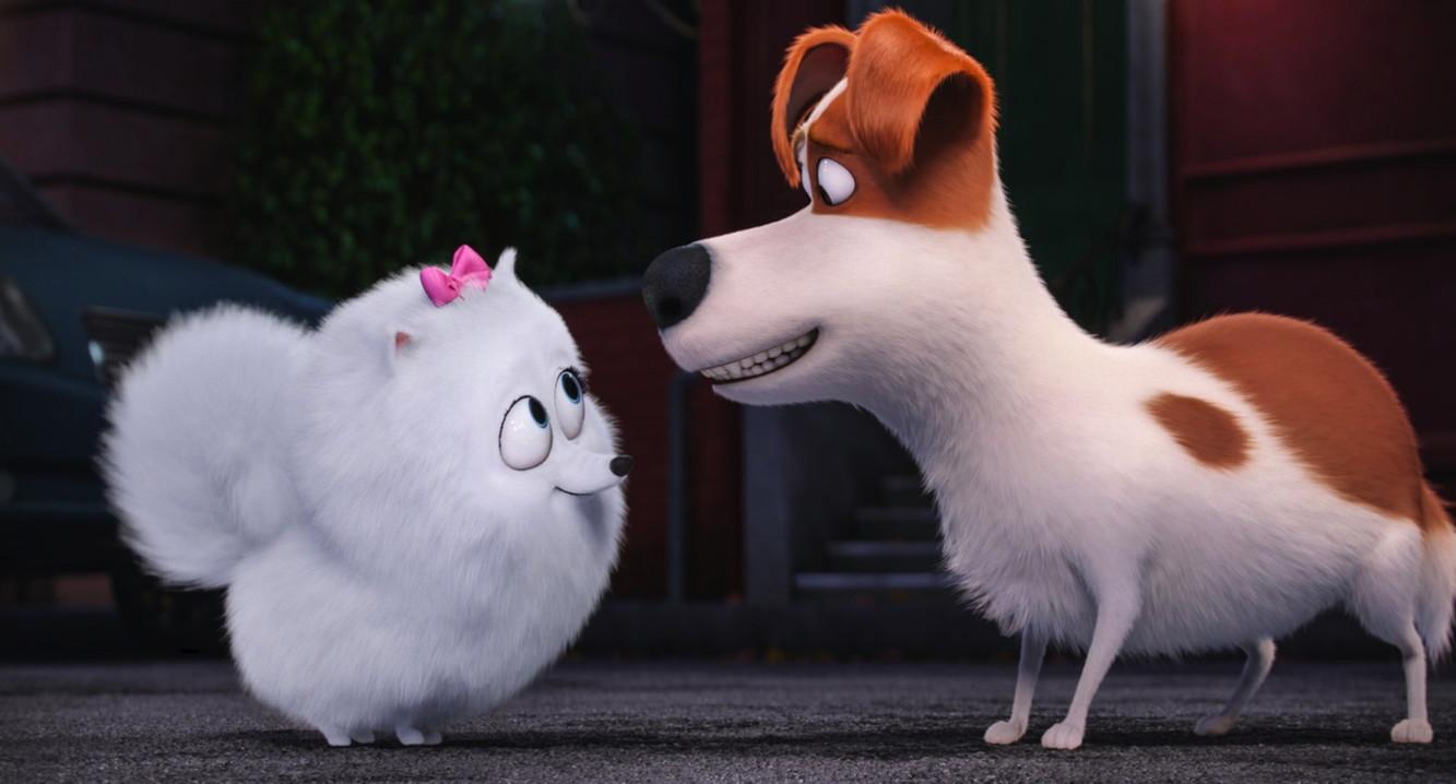 Secret Life of Pets 1