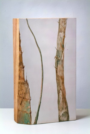 """Pam Posey Birch, 2008 Pencil and watercolor on gessoed wood 13 x 7.75 x 2.75"""""""