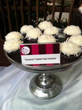 zoo - yummy cupcakes