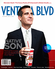 VB_Cover